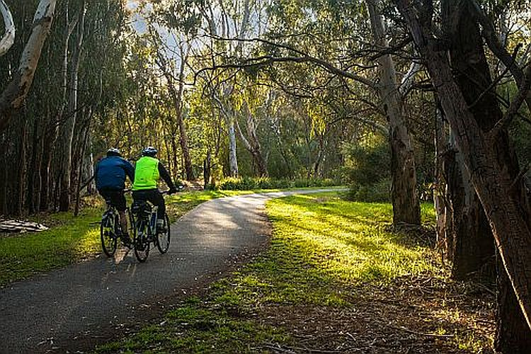 Cyclists on the Yarra trail